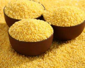 Chinese Millet, Yellow Millet, Nourishing The Stomach, Dietary Therapy pictures & photos