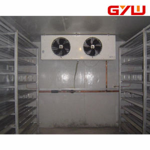 Blast Freezer Cold Storage for Food, Medical pictures & photos