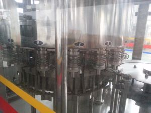SGS Pet Pure/Mineral Water Bottle Filling Machine pictures & photos
