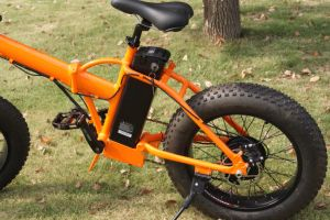 New Model Small Fat Wheel Folding Electric Bicycle pictures & photos