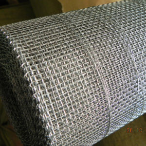 Galvanized Welded Square Wire Mesh/ Galvanized Square Crimped Wire Mesh pictures & photos