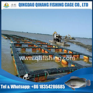 Cage Fish Farming in Uganda, Catfish Farming pictures & photos