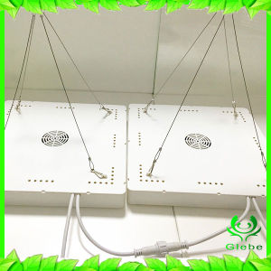 LED Grow Light Plant Lamp for Indoor Plants Panel 225PCS 2835 LED, Built in 1PCS 50W Constant Current Power Supply pictures & photos