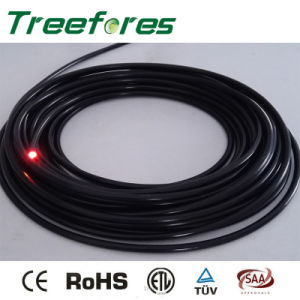 Side Light Fiber Optic for Edge Pool Light pictures & photos