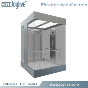 Panoramic Elevator with Small Machine Room pictures & photos