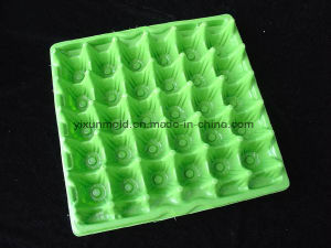 Customized Food Grade Household Plastic Quail Egg Tray with Holes pictures & photos