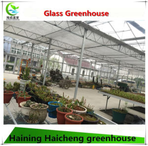 Glass Polycarbonate Hydroponic Greenhouse for Agriculture pictures & photos