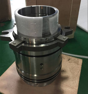 OEM Big Size 160mm Customized Design Cartridge Seal for Sale