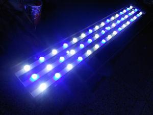 Onlyaquar 1.2BS203 LED Aquarium Light pictures & photos