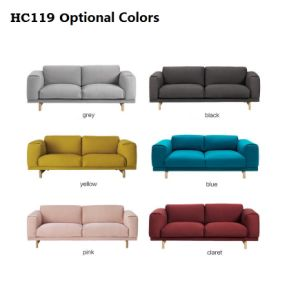 Home Furniture Modern Living Room Fabric Sofa-Hc119 pictures & photos