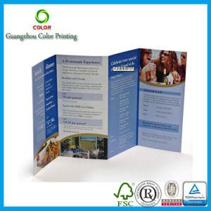 Cheap Printing Flyer Custom Paper Folder