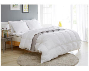 Luxury Siberia 100% White Goose Down Quilt Duvet Comforter to USA pictures & photos