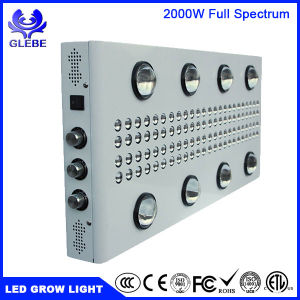 1000W 1500W 2000W LED Grow Light UV Red Blue Lighting for Indoor Plants Seedling Growing Flowering pictures & photos