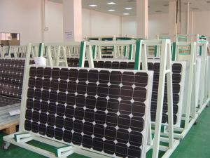 300W Monocrystalline 12V PV Solar Module pictures & photos
