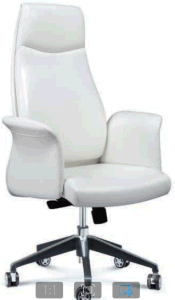 Xindian Perfect Feature PU/Leather Office Chair (A9136) pictures & photos