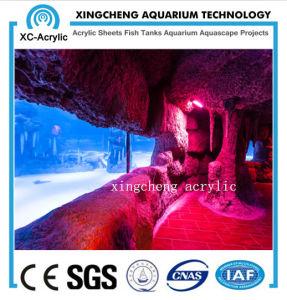 Customized Large Transparent UV Acrylic Panel Aquarium pictures & photos