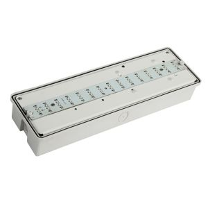 IP65 3W LED Rechargeable LED Emergency Light Bulkhead pictures & photos