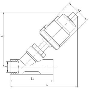 Thread Pneumatic Angle Seat Valve pictures & photos