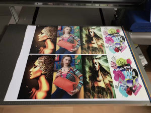 Stable Performance A1 Cj-R9060UV with White Ink, Ball Screw, Servo Motor UV Flatbed Printer pictures & photos