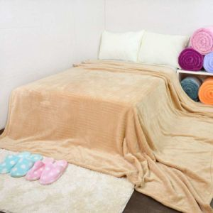Wholesale Travel Soft Fleece Blanket pictures & photos