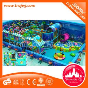 Ocean Theme Park Children Playground Equipment Indoor Playground pictures & photos