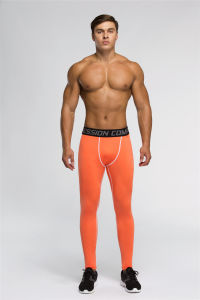 Men′s Tight Gym Professional Sport Pants (SP16026)