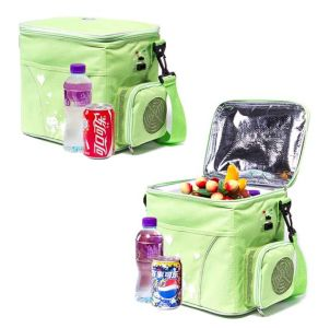 Portable Electronic Mini Fridge 6 Liter DC12V for Cooling and Warming pictures & photos
