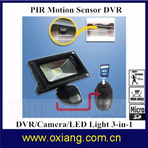 10W Waterproof LED Light Camera Wall Mount Infrared LED Night Motion Sensor Camera pictures & photos