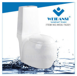 Weidansi Ceramic Wash Down S-Trap Two Pieces Toilet (WDS-T6201) pictures & photos