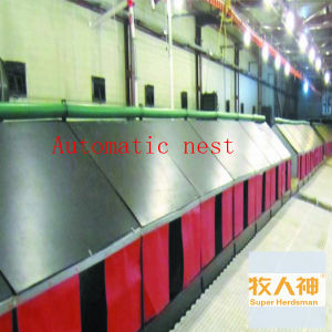 Manual Nest for Layer Chicken in Poultry House pictures & photos