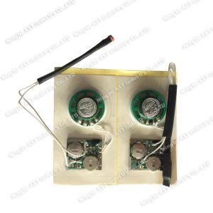 Light Sensor Sound Module, Musical Module, Light Activities Voice Module pictures & photos
