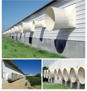 Indonesia poutry fan/ Indonesia poultry ventilation pictures & photos