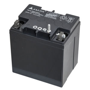 Long Life Deep Cycle Battery with SGS Certification (12V24ah)