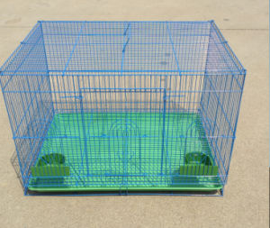 Bird Cage Rabbit Cage Pet Cage pictures & photos