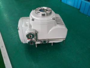 Ex Proof Quarter Turn Electric Actuator Exd Iib T6 pictures & photos