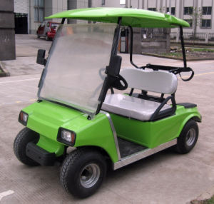 3000 W Electric Power Golf Cart / Club Car pictures & photos