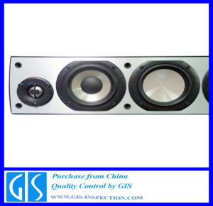 Professional Inspection Service for Speakers in China pictures & photos