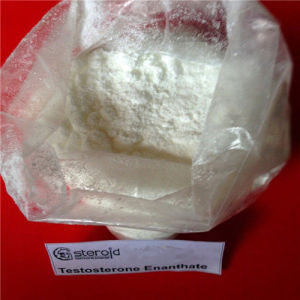 Testosterone Enanthate Powder 250mg Finished Steroids Oil Testosterone Enanthate pictures & photos