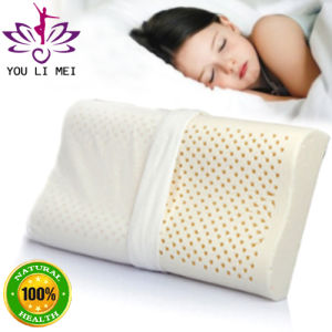 Latex Pillow Special Designed for Students