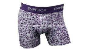 New Style Allover Print Men′s Boxer Short Underwear pictures & photos