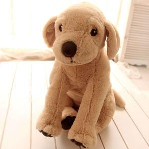 Plush Little Dog pictures & photos