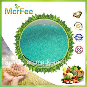 100% Water Soluble NPK 20-20-20 Te Compound Fertilizer pictures & photos