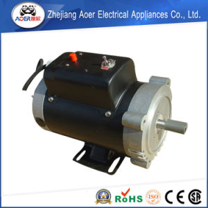 Single Phase Reversible AC Motor Shaft pictures & photos