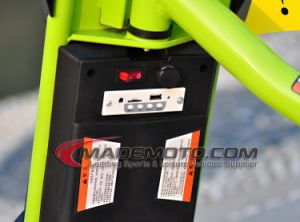 Hot Sale Small Size for Kid 250W Electric Scooter pictures & photos