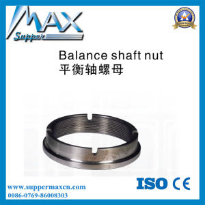 Balance Shaft Nut pictures & photos