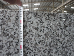 Popular White Granite, Granite Tiles and Granite Slabs pictures & photos