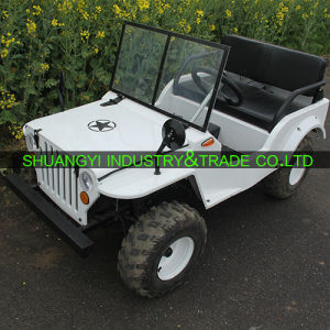 Newest 1200W E-ATV