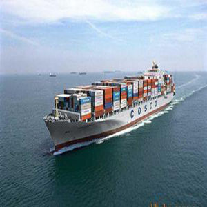 Biggest Forwarder for Shipment in China pictures & photos