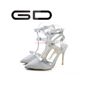 Latest Fancy Women Pointed Toe Shoes Lace Material High Heel Sandals pictures & photos