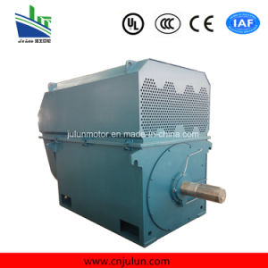 High-Voltage Squirrel Cage 3-Phase Induction Asynchronous Electric Motor pictures & photos